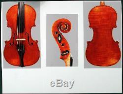 A very fine Italian violin by Giuseppe Tarasconi, 1899