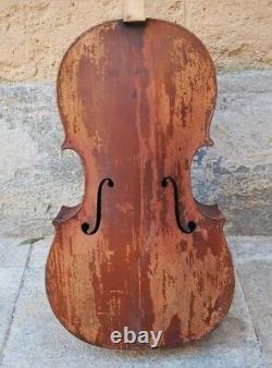 Very fine old cello English 19th project 3